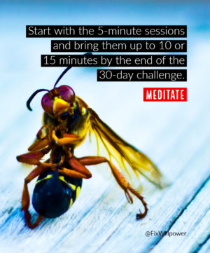 30-day challenges meditate