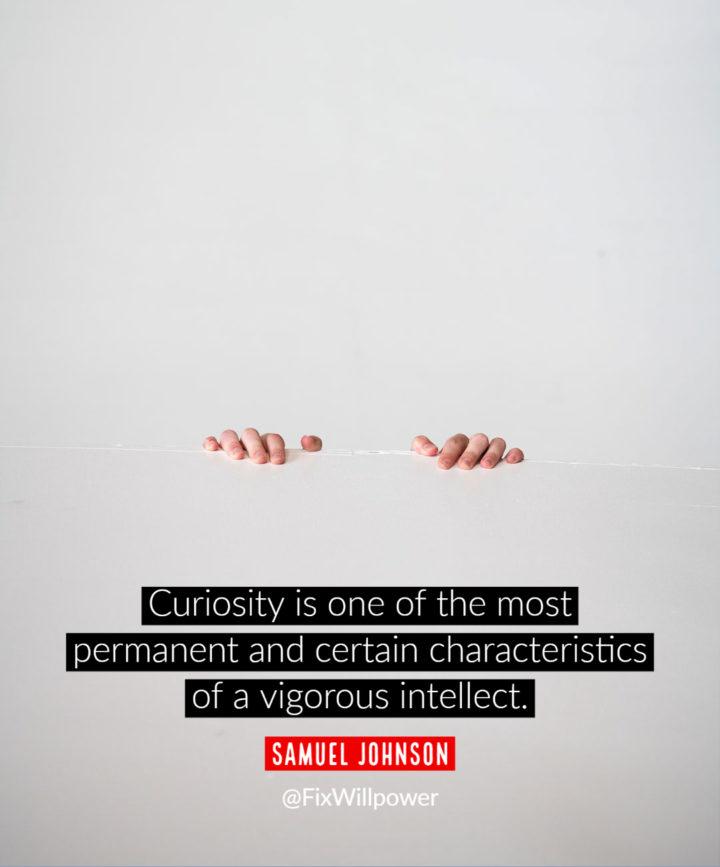 curiosity quotes johnson