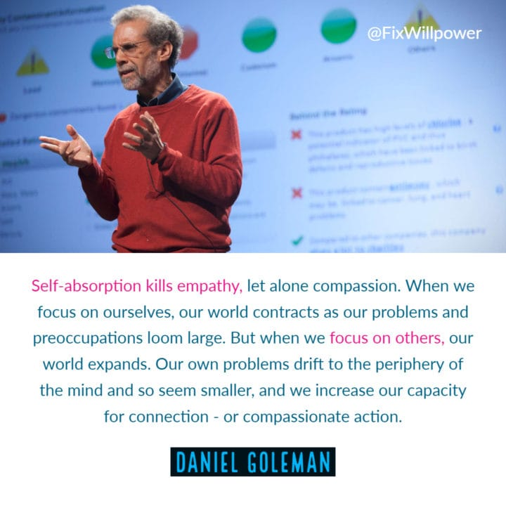 different perspective Daniel Goleman