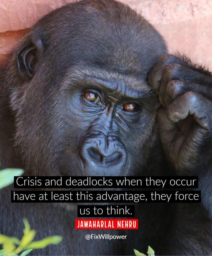 economic crisis quotes nehru