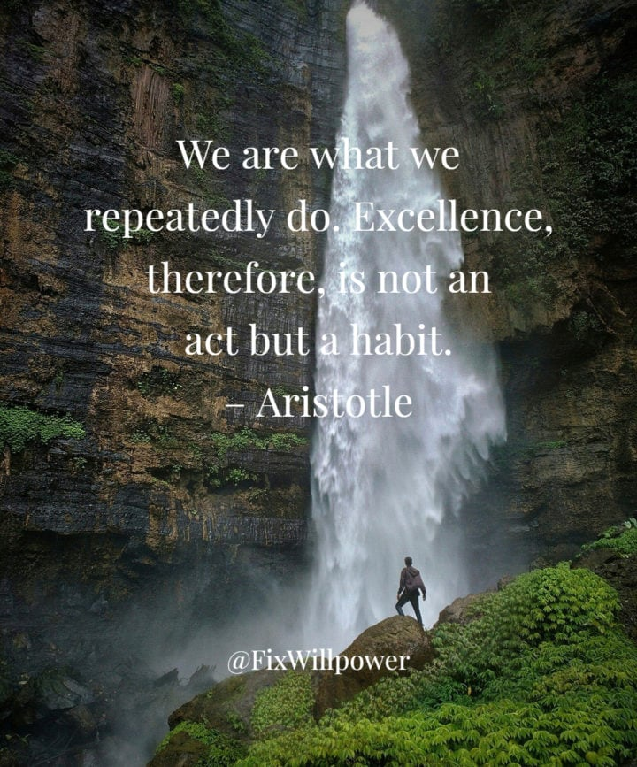 excellence quote Aristotle