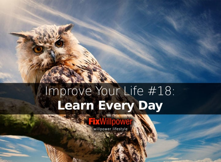 learn every day
