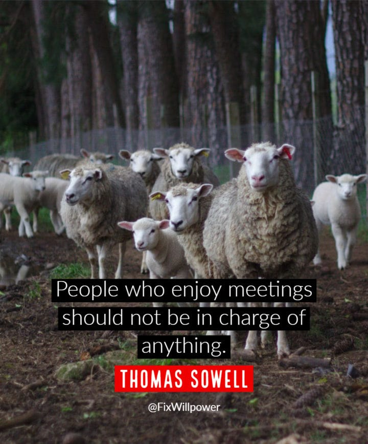 meetings quotes Sowell