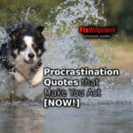 Procrastination Quotes that Inspire You to Act [NOW!]