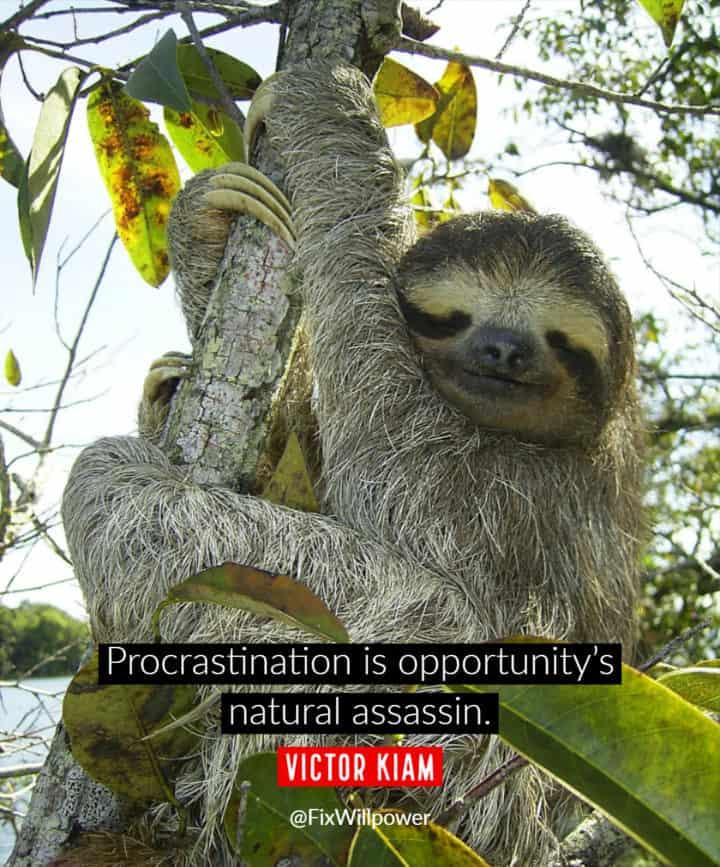 procrastination quotes Kiam