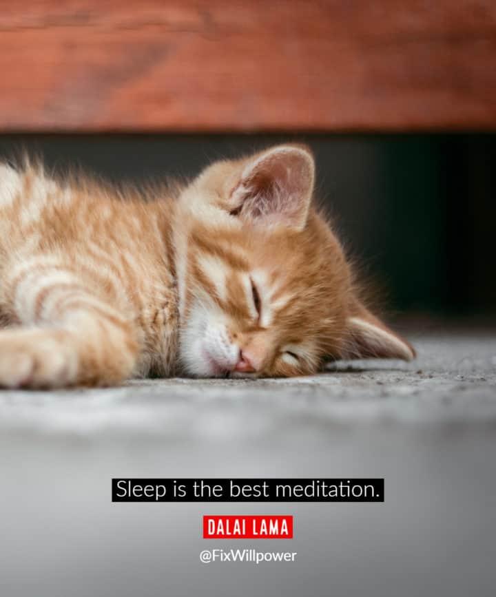 sleeping quote Dalai Lama