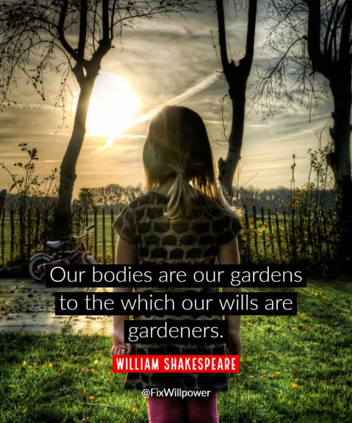 willpower quotes William Shakespeare